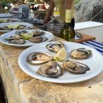 Oyster lunch Ston, Dalmatian Coast, Croatia