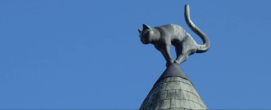 Cat Building Riga