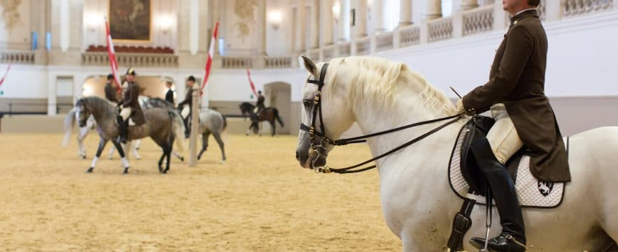 Spanish Riding School - Vienna, Austria